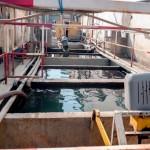 TMĐN Xử lý nước thải (2)